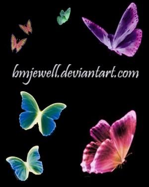蝶の無料素材10