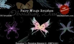 蝶の無料素材12