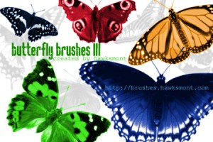 蝶の無料素材2