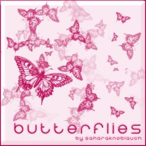 蝶の無料素材6